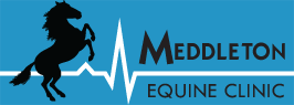 Meddleton Equine Clinic
